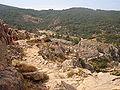 Corse-04877-calanche de Piana-chemin muletier.jpg
