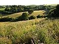 Countryside near South Knighton - geograph.org.uk - 906872.jpg