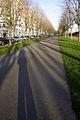 Cours d'Ajot Brest.JPG