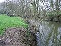 Cours d'eau a acigné - panoramio (1).jpg
