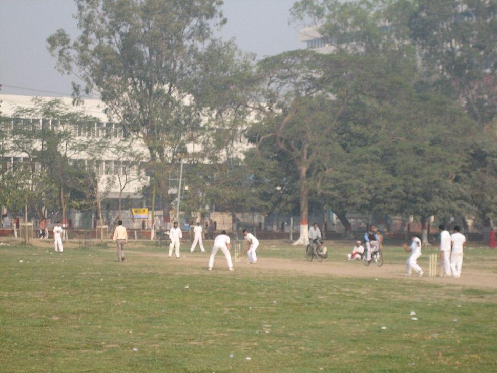 Cricket (2305682483)