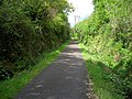 Cycleway Through Cuil Wood - geograph.org.uk - 431717.jpg