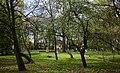 Częstochowa ul. Zbyszka plac zabaw 11.05.2019 p.jpg