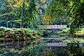 Dülmen, Wildpark -- 2015 -- 8894-8.jpg