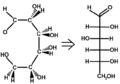 D-Glucosecram-fischer.png