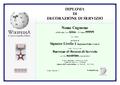 DIPLOMA DECORAZIONE SERVIZIO WIKIPEDIA modello.png