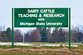 Dairy Cattle Teaching and Research Center 1331.jpg