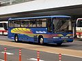 Daishinto Sun & Moon Bus Selega FS.jpg