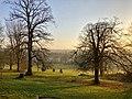 Darley Park, looking north-eastwards.jpg