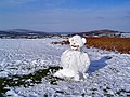 Dartmoor snowman - geograph.org.uk - 84378.jpg