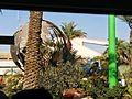 Dead Sea Works, Sodom, Dead Sea, Israel 47.jpg