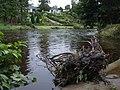 Debris, Camowen River - geograph.org.uk - 925859.jpg