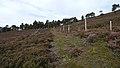Deer Fence (An Sgòr Dubh) on Mar Lodge Estate (06AUG17) (1).jpg