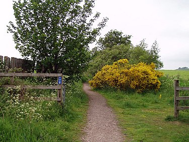 Deeside Way - geograph.org.uk - 453020.jpg