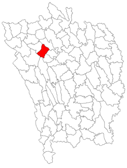 Location of Delești
