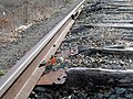 Destroyed Central Mass track in Weston, April 2017.JPG