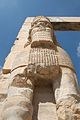 Detail- The Gate of All Nations, Persepolis, Iran (4670203537).jpg