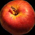 Dg apple.png