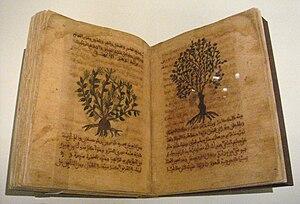 Materia medica - Dioscorides De Materia Medica in Arabic, Spain, 12th-13th century.