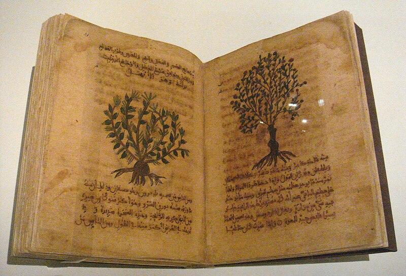File:Dioscorides De Materia Medica Spain 12th 13th century.jpg