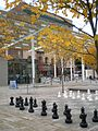 Director Park, chess.jpg