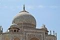 Dome Chhatris Spires - Taj Mahal - Agra 2014-05-14 3805.JPG