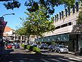 Double Bay Knox Street 1.JPG