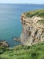 Druidston Chins - geograph.org.uk - 1538467.jpg