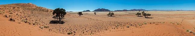 Duna Elim, Sossusvlei, Namibia, 2018-08-06, DD 165-162 PAN.jpg