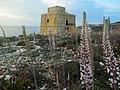 Dwejra Tower, Gozo.jpg