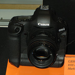 EOS 1Ds Mark III img 0829.jpg