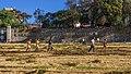 ET Addis asv2018-02 img8.jpg