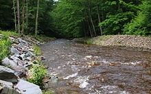 East Branch Fishing Creek in June 2015 (2).JPG