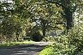 East Worlington, approaching Drayford - geograph.org.uk - 271032.jpg