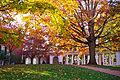 Eastern colonnade UVa from east in autumn.jpg