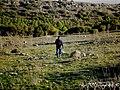 El hombre del campo, siempre garrota en mano y dando saltos por el paraíso natural - panoramio.jpg