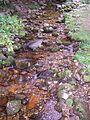 El río Dobra naciente. Posada de Valdeón (León). Parque Nacional de los Picos de Europa. ES000003. ROSUROB.JPG