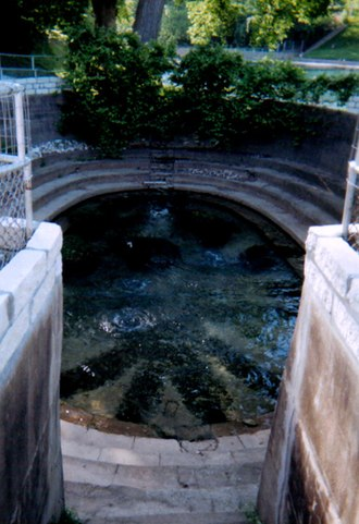 Barton Springs - Eliza Spring in 2005.