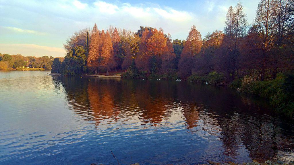 Emmarentia Dam in Autumn.jpg