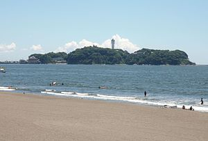 Enoshima view from Kugenuma beach.jpg