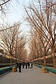 Entrance path at Beijing YONGHEGONG Lama Temple - panoramio.jpg