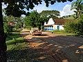 Estrada de terra na frente do Casarão da Fazenda do Centro.jpg