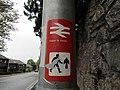 Exeter St Davids Sticker.jpg