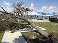 FEMA - 11339 - Photograph by Michael Rieger taken on 09-27-2004 in Florida.jpg