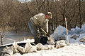 FEMA - 40565 - A resident working with sand bags in North Dakota.jpg