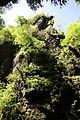 FR64 Gorges de Kakouetta14.JPG