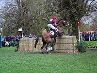 Fence 12, Badminton Horse Trials - geograph.org.uk - 794809.jpg
