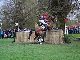 Fence 12, Badminton Horse Trials - geograph.org.uk - 794809.jpg