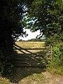 Field opposite Porthgwidden - geograph.org.uk - 895226.jpg