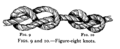 Figure Eight Knot.png